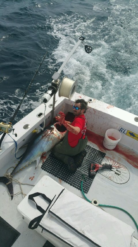 PG 17 | limiteduser, Author at Fishing Charter Boat Ocean City MD