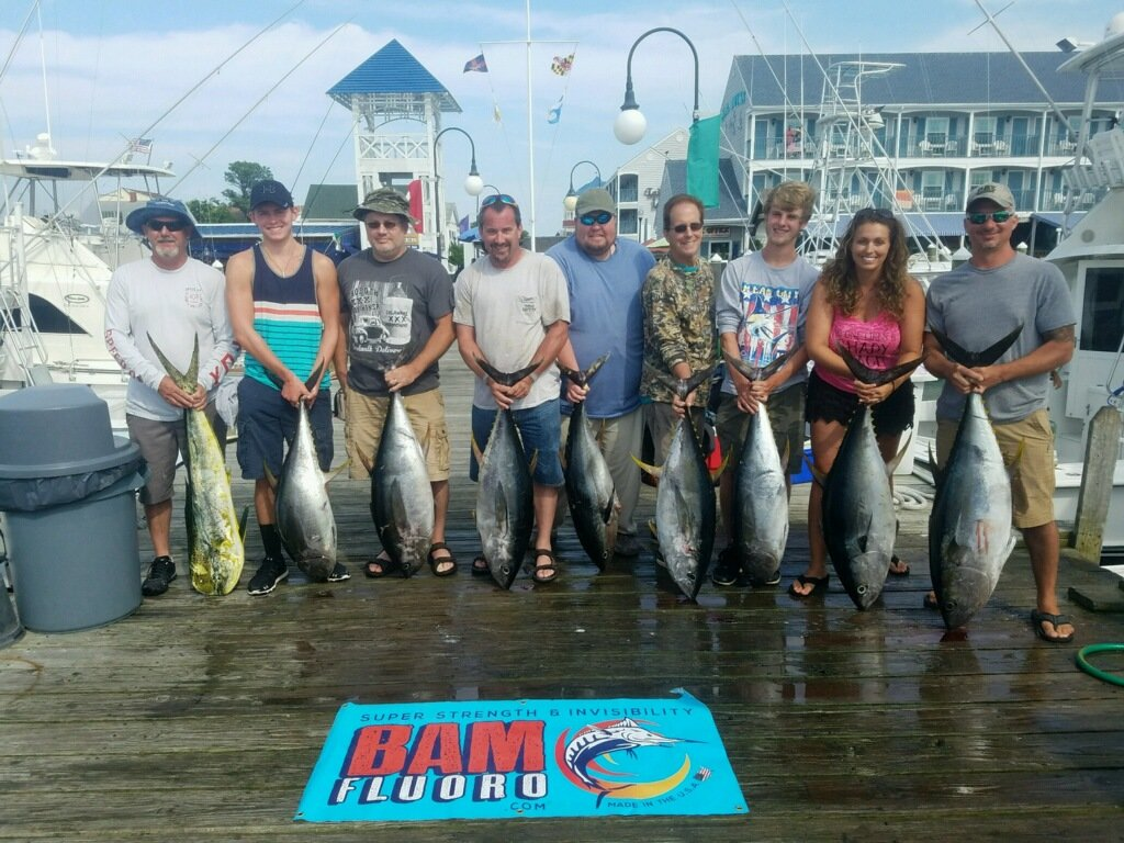 Fishing report july 13 2017 ocean city md fishing for Md fishing charters