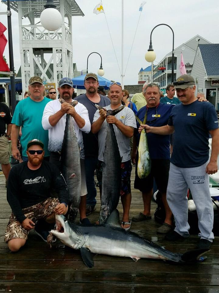 Fishing Reports Ocean City Maryland Charter Boats